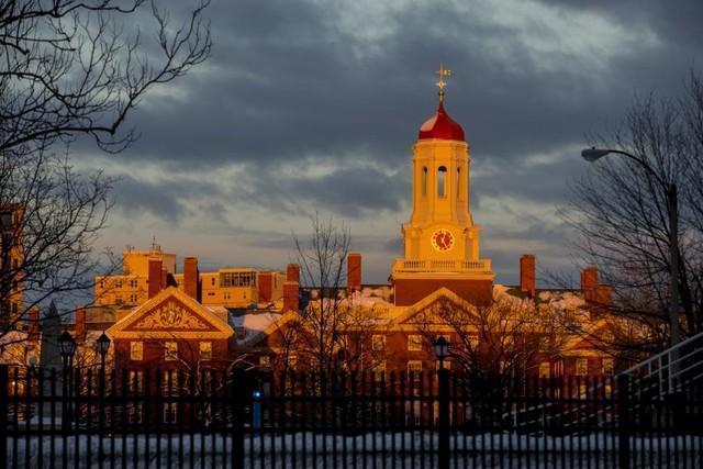 Filha de pedreiro, aluna de medicina da USP vende pão de mel para pagar intercâmbio em Harvard