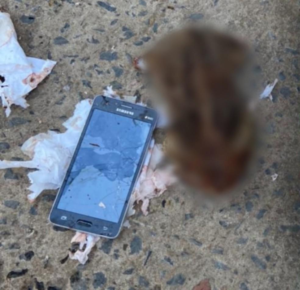 Celular é encontrado dentro de um sapo em presídio de Minas Gerais